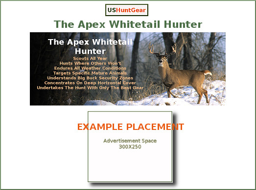 advertising-placement-apex-hunter-game-page-w-border.jpg